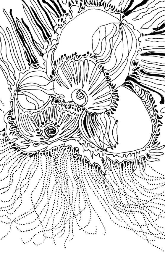 rsz-protea