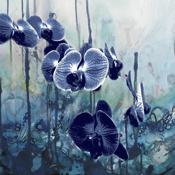 deb-haugen-midnight-orchids-vintage